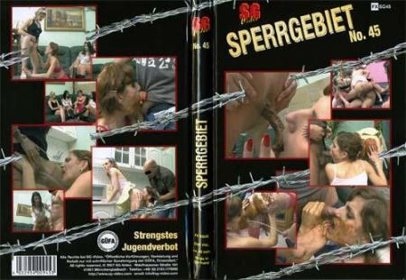 ShitGirl - Sperrgebiet No. 45 [SG studio / 999 MB] DVDRip (Sex Scat, Germany)