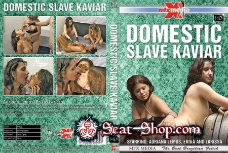 Adriana Lemos, Erika, Larissa - [SD-6009] Domestic Slave Kaviar [MFX Media / 1.25 GB] HDRip (Lesbian, Domination)