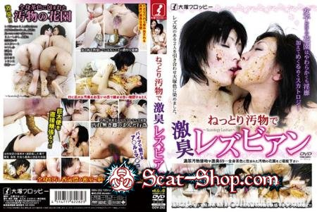 ODV-282 - Hard scat with grubby dirty lesbians Part 1 ねっとり汚物で激臭レズビアン Part 1 [Ohtsuka-f / 898 MB] DVDRip (Lesbian, Japan Scat)