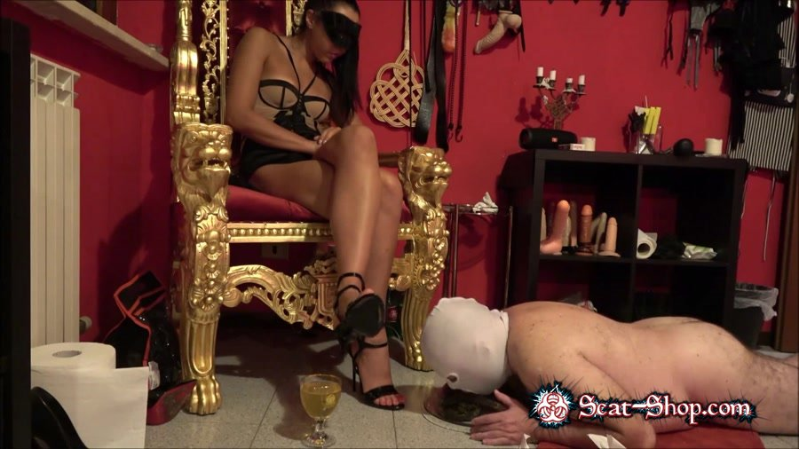 Mistress Gaia - The training goes on [Toilet Slavery / 508 MB] FullHD 1080p (Domination, Scat)